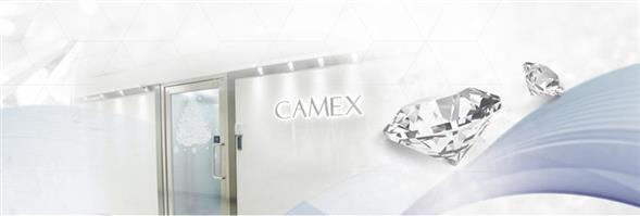 Camex Jewellery Limited's banner