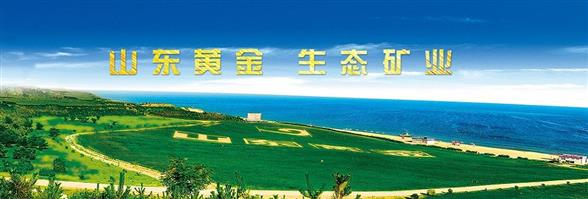 Shandong Gold Financial Holdings Group (Hongkong) Co., Limited's banner