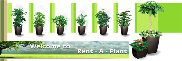 Planter Pro Limited's banner