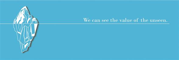 AVISTA PRO-WIS Risk Advisory Limited's banner