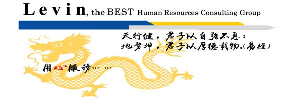 Levin Human Resources Development Limited's banner