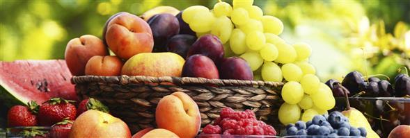 Kingo Fruits (Hong Kong) Company Limited's banner