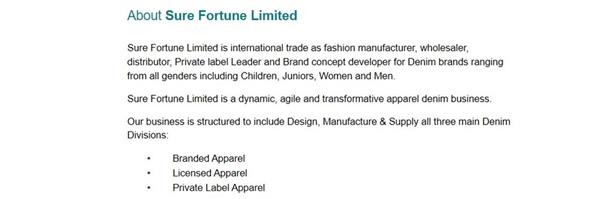 Sure Fortune Limited's banner