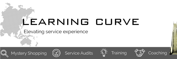Learning Curve Solutions Limited's banner