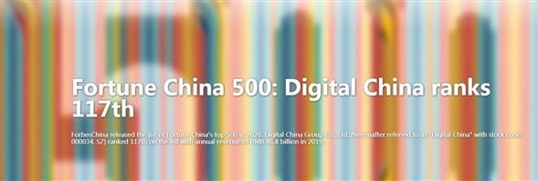 Digital China (HK) Limited's banner
