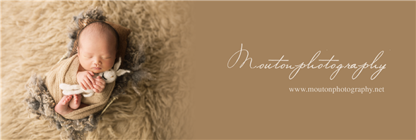 Mouton Photography's banner