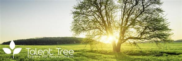 Talent Tree Limited's banner