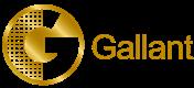 Gallant Computer Company Limited's logo