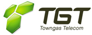 Towngas Telecommunications Company Limited's logo