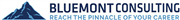 Bluemont Consulting's logo