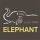 Elephant Holdings Ltd's logo