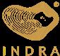 Indra Company Limited's logo