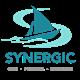 Synergic Consultant Company's logo