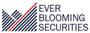 Ever Blooming Securities Limited