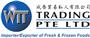 WTT Trading Pte Ltd